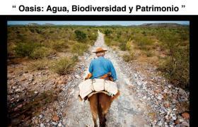 Exposición 'Oasis: agua, biodiversidad y patrimonio'.