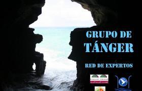 GRUPO DE TÁNGER - Red de expertos de consolidación de la democracia
