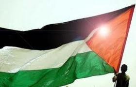 La ONU reconoce a PALESTINA COMO ESTADO OBSERVADOR por mayoría absoluta
